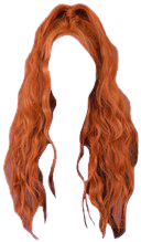 Ginger Orange Red Hair Half Up