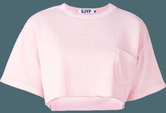 Pink Plain Crop Top
