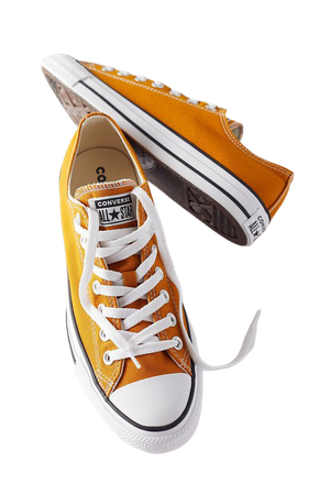 Converse Chuck Taylor All Star Seasonal Color Low Top Sneaker | Urban Outfitters