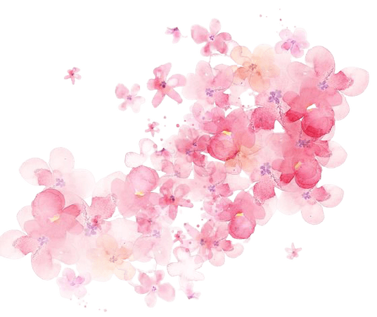 Pink Watercolor Flowers Backdrop