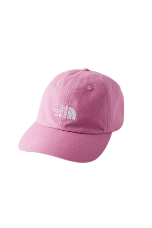 The North Face The Norm Baseball Hat | Urban Outfitters