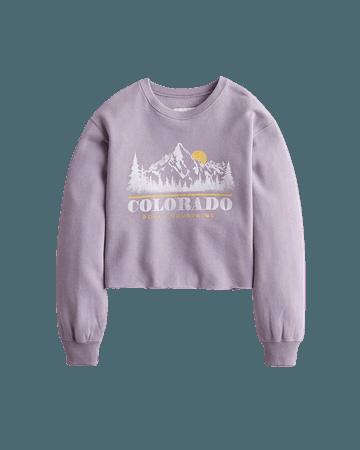 Girls Crop Boyfriend Crewneck Sweatshirt | Girls New Arrivals | HollisterCo.com Purple