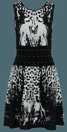 Leopard Knit Skater Dress | Karen Millen