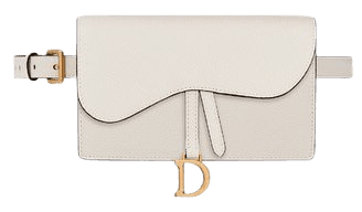 Saddle belt clutch in calfskin - Bags - Women's Fashion   DIOR