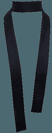 Silk Twill Skinny Neck Scarf Tie Black, Shantung Wild Taffeta French Dupioni AA Maxi Twilly Long Thin Narrow choker; Sash Ascot Bow, Boho
