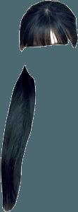 Black Hair Bangs Low Ponytail