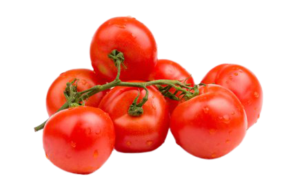 On the Vine Red Tomatoes