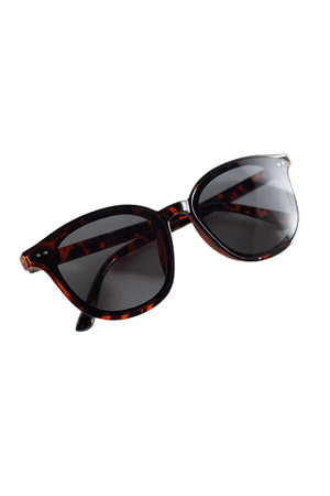 Thatcher Plastic Round Sunglasses | Urban Outfitters