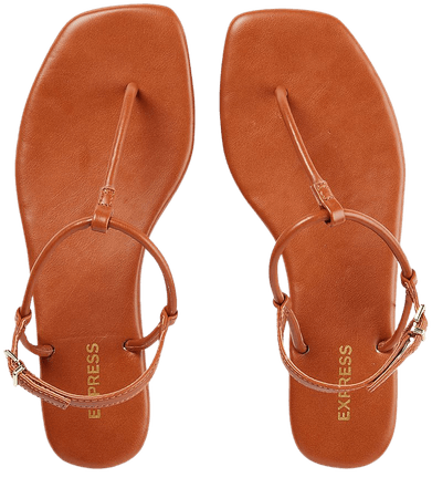 Simple T-strap Sandals | Express