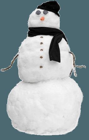 snow bro