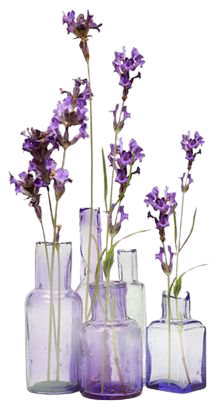purple lavender filler png aesthetic flower mood
