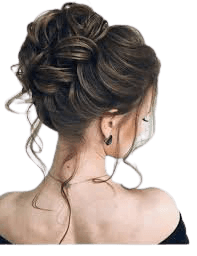 fancy updos - Google Search