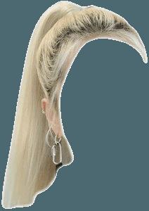 BLONDE HAIR PNG PONYTAIL