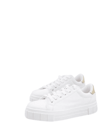 Miss Selfridge Tilly lace up sneakers with gold tab in white   ASOS