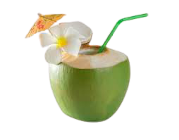 coconut drinks - Google Search