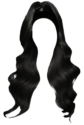 black half up half down hair edit png