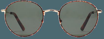 Women's Fest Aviator Sunglasses | Madewell