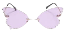 Madame Butterfly Sunglasses | Koi