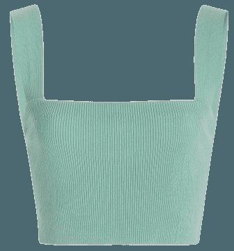 Silk Ribbed Wide Strap Cropped Tank Top By Oscar De La Renta | Moda Operandi