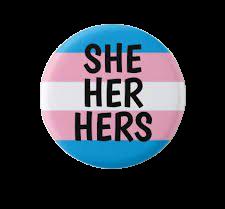 pronoun button transparent she/her - Google Search