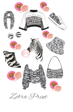 Zebra accesoriea