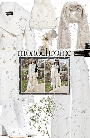 White Winter Monochrome