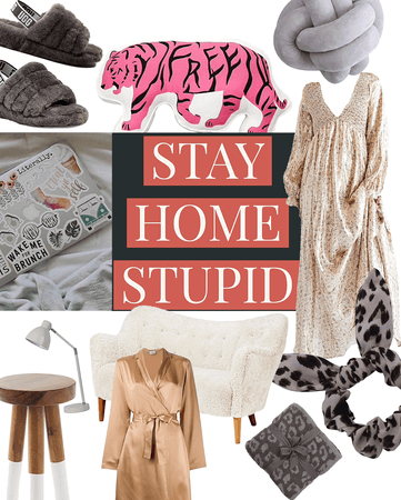 stay home, stupid
