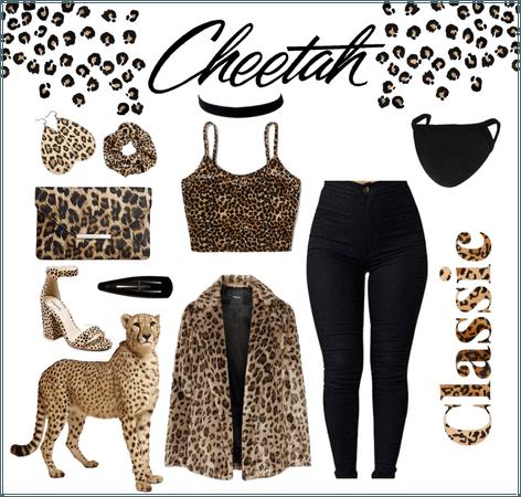 Favorite Animal~Cheetah ❤️
