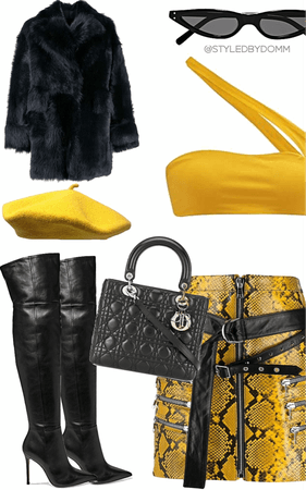 yellow snake and black