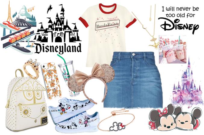 Disney Park Day