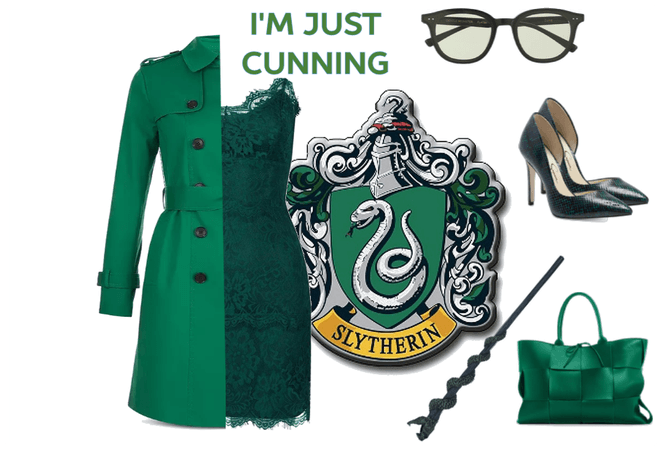 The Cunning Slytherin