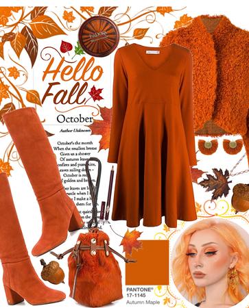 Autumn Maple 🍁