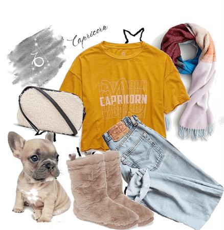 Comfy Capricorn