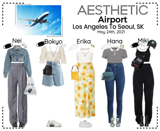 AESTHETIC (미적) [AIRPORT] Los Angeles, CA To Seoul, SK