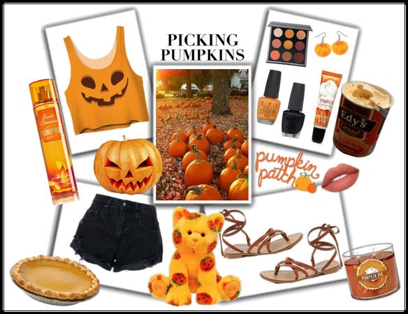 Pumpkin Patch/Halloween in Florida