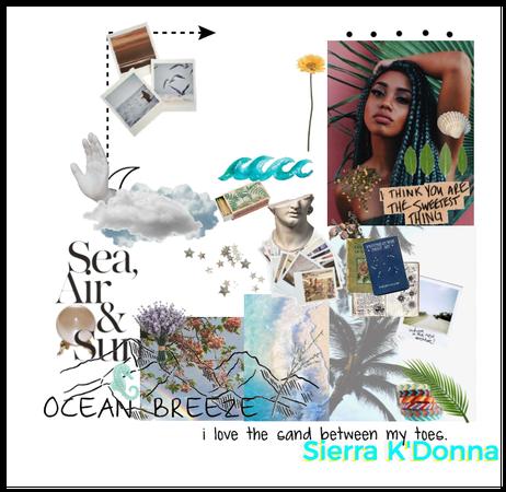 Sierra Mood Board