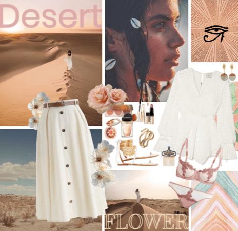 Sweet desert rose