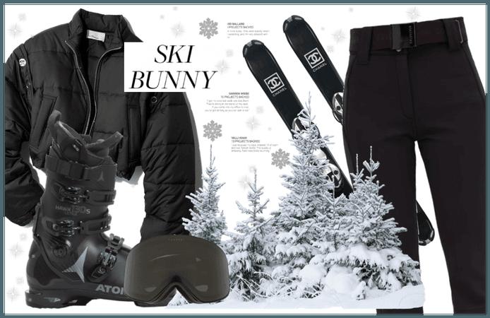 Ski Get-Away