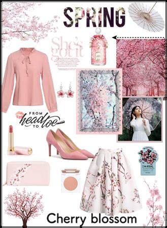 Spring - Cherry Blossom🌺
