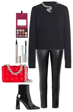 3009228 outfit image