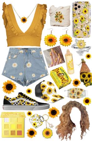 Sunflower season
