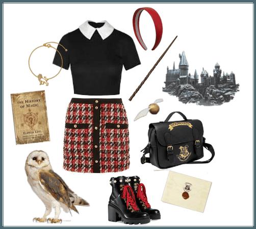 if i went to hogwarts: gryffindor