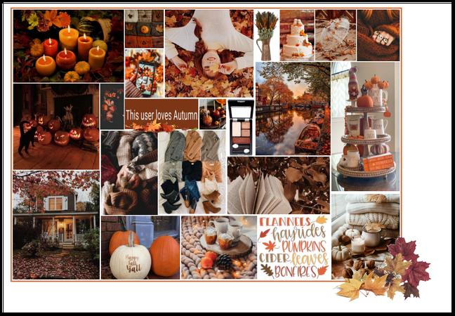This user loves Autumn