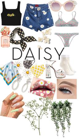 Daisy Daisy Daisy Daisy Daisy