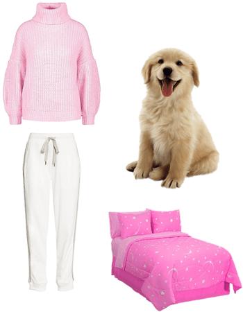 doggo bedtime 🐶🛌