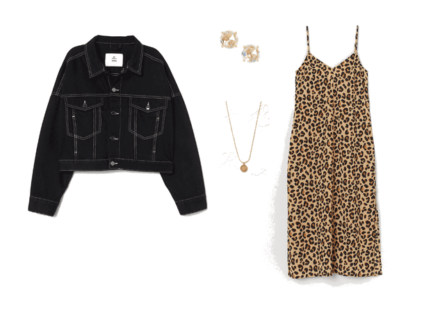 Cropped Jacket and Animal Print Dress