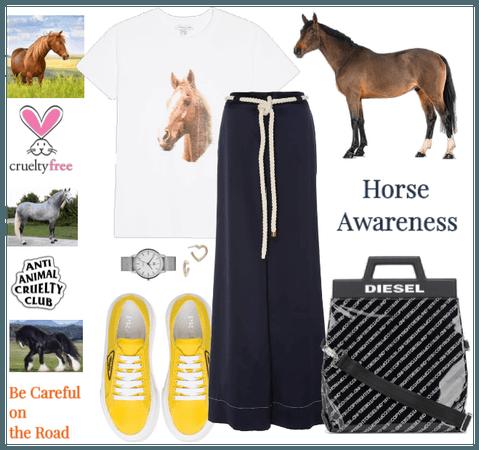Horse Awareness