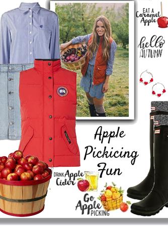 Apple  🍏 🍎 Picking Fun