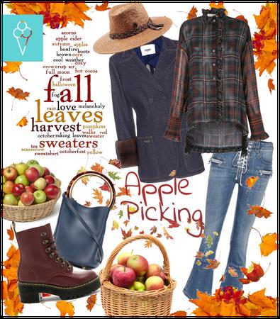 # Apple picking # Shoplook # Harvest time