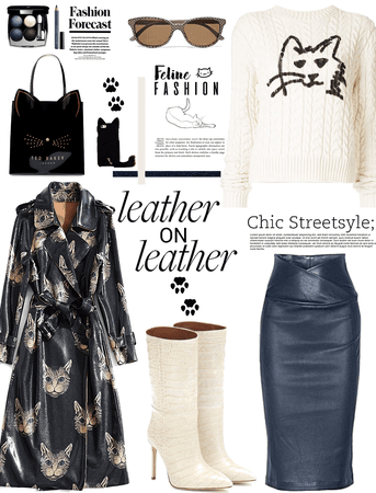 Leather on leather.     feline fashion